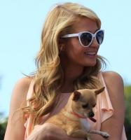 Paris Hilton: Mit hjerte er knust! paris hilton