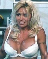 Video: Se Pamela Anderson uden tøj! Pamela Anderson, nøgen, PETA