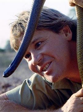 Animal Planet hylder Steve Irwin på Søndag Steve irwin