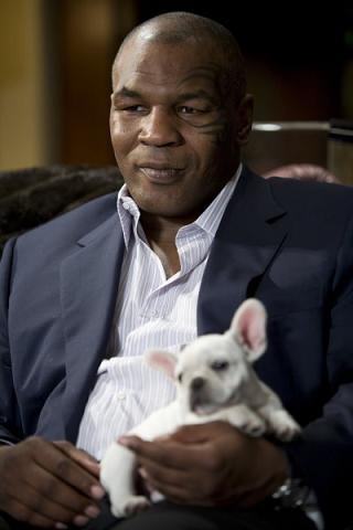 Tyson fandt Pitt i seng med konen! mike tyson, brad pitt,