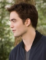 Pattinson vil kv�le blogger! robert pattinson, twilight,