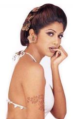 Big Brother's Bollywood ballade Shilpa Shetty, Big Brother, krise