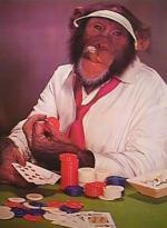 Frisbees forbudt i poker Poker,wsop