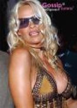 Pamela tilbage i Baywatch Pamela Anderson, Davidhasselhof, Carmen elektra