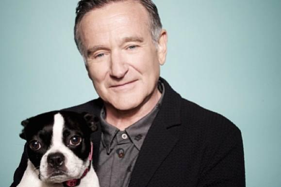 Robin Williams: Efterladte i arvestrid! robin williams, hollywood