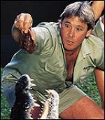 Se Iriwns døds-dokumentar Steve Irwin, Krodillejæger, Animal Planet