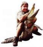 Steve Irwin dræbt under TV-optagelse Steve Irwin, The crodille hunter,