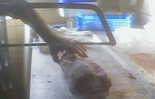 Testen - De ulovlige slagtere i aften De ulovlige slagtere